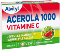 Govital Acerola 1000 à SARROLA-CARCOPINO