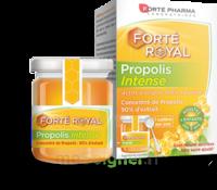 Forte Pharma Propolis Intense Gelée Pot/40g à SARROLA-CARCOPINO