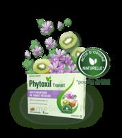 Phytoxil Transit Comprimés B/20 à SARROLA-CARCOPINO