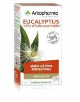 Arkogélules Eucalyptus Gélules Fl/45 à SARROLA-CARCOPINO