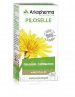 Arkogélules Piloselle Gélules Fl/45 à SARROLA-CARCOPINO