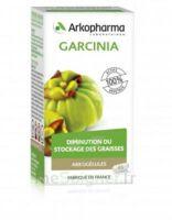 Arkogélules Garcinia Gélules Fl/45 à SARROLA-CARCOPINO