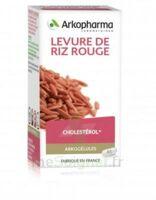 Arkogélules Levure de riz rouge Gélules Fl/45 à SARROLA-CARCOPINO