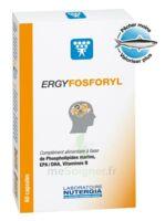 Ergyfosforyl Caps B/60 à SARROLA-CARCOPINO