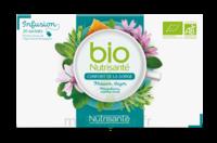 Nutrisanté Infusions Bio Tisane Confort de la gorge 20 Sachets à SARROLA-CARCOPINO