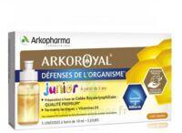 Arkoroyal Défenses Naturelles Gelée Enfant Dès 6 Ans 5 Doses/10ml à SARROLA-CARCOPINO