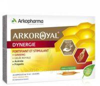 Arkoroyal Dynergie Ginseng Gelée Royale Propolis Solution Buvable 20 Ampoules/10ml à SARROLA-CARCOPINO