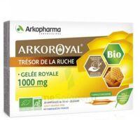 Arkoroyal Gelée Royale Bio 1000 Mg Solution Buvable 20 Ampoules/10ml à SARROLA-CARCOPINO