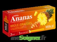 Milical Ananas Bruleur De Graisse à SARROLA-CARCOPINO