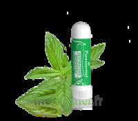 Puressentiel Respiratoire Inhaleur Respiratoire Aux 19 Huiles Essentielles - 1 Ml à SARROLA-CARCOPINO