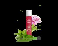 Puressentiel Anti-pique Roller Apaisant Anti-Pique - 5 ml à SARROLA-CARCOPINO