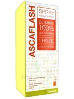 Ascaflash Spray anti-acariens 500ml à SARROLA-CARCOPINO