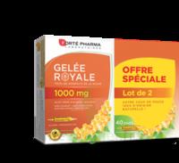 Forte Pharma Gelée Royale 1000 Mg Solution Buvable 2*b/20 Ampoules/10ml à SARROLA-CARCOPINO