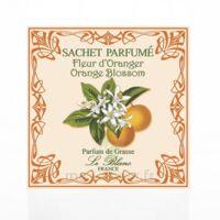 Le Blanc Sachet Parfumé Fleur d'Oranger à SARROLA-CARCOPINO