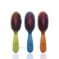 Cartel Brosse Cheveux Pneumatique Sanglier Large à SARROLA-CARCOPINO