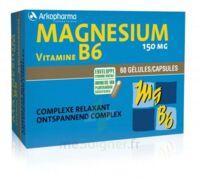 Arkovital Magnésium Vitamine B6 Gélules B/120 à SARROLA-CARCOPINO