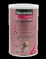 Biocanina Lait Poudre Maternisé B/400g à SARROLA-CARCOPINO