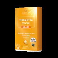 Terracotta Cocktail Solaire Comprimés B/30 à SARROLA-CARCOPINO