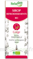 Herbalgem Sirop Bio Refroidissement 150ml à SARROLA-CARCOPINO