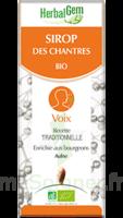 Herbalgem Sirop Bio Des Chantres 150ml à SARROLA-CARCOPINO
