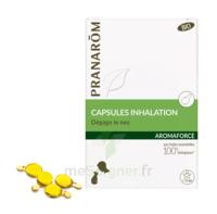 Aromaforce Caps Inhalation Bio B/15 à SARROLA-CARCOPINO