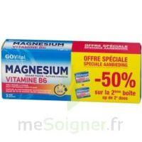Govital Magnésium Vitamine B6 Comprimés 2*b/45 à SARROLA-CARCOPINO