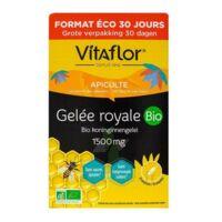 Vitaflor Bio Gelée Royale 1500mg Solution Buvable 30 Ampoules/15ml à SARROLA-CARCOPINO