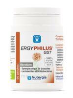 Nutergia Ergyphilus Gst Gélules B/60 à SARROLA-CARCOPINO